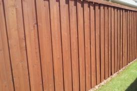Sierra on Old Fence